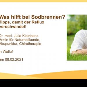 Screenshot vom Webinar über Sodbrennen in Zusammenarbeit mit Luvos Heilerde