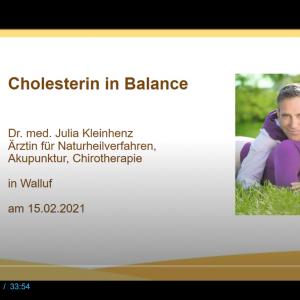 Screenshot Webinar über Cholesterin in Zusammenarbeit mit Luvos Heilerde